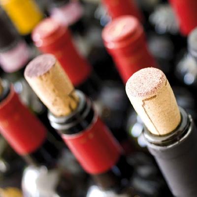Verifica etichette vino Agristudio Stradella